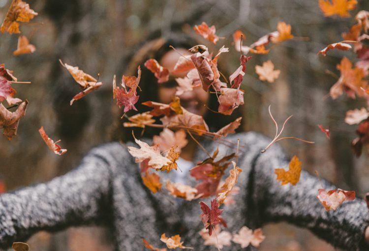 De herfst trends